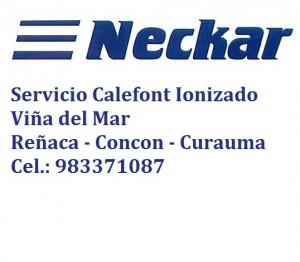 servicio gasfiter calefont neckar splendid c 983371087 viña del mar -