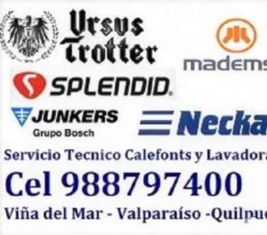 toyotomi mademsa servicio tecnico estufas  988797400 quinta region