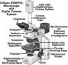 Reparación de microscopios