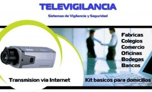 vigilancia por internet , camaras
