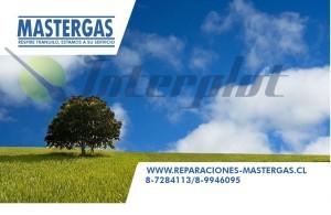 servicio tecnico saturn junkers  mastergas tecnico sec