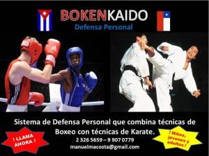 defensa personal con técnicas de boxeo y karate para niños, jóvenes y
