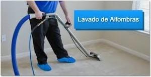 limpieza o lavado de tapices de autos, muebles y alfombras er