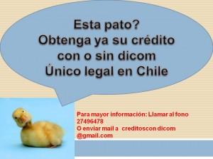 creditos con o sin dicom unico legal en chile