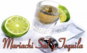 mariachis sal y tequila ofrece sus servicios