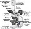 Reparaci�n de microscopios